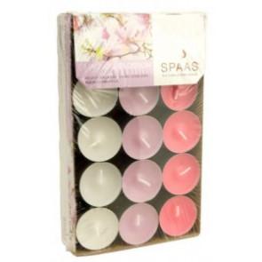 Spaas Čajové 30ks 3barvy Magnolia blossom vonné svíčky krabička